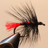 FLY OF THE MONTH- March 2018