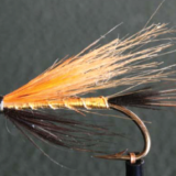 FLY OF THE MONTH- April 2018