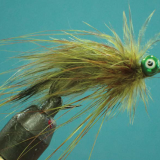 FLY OF THE MONTH- July 2018