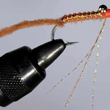 FLY OF THE MONTH- September 2018