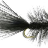 FLY OF THE MONTH- May- 2019